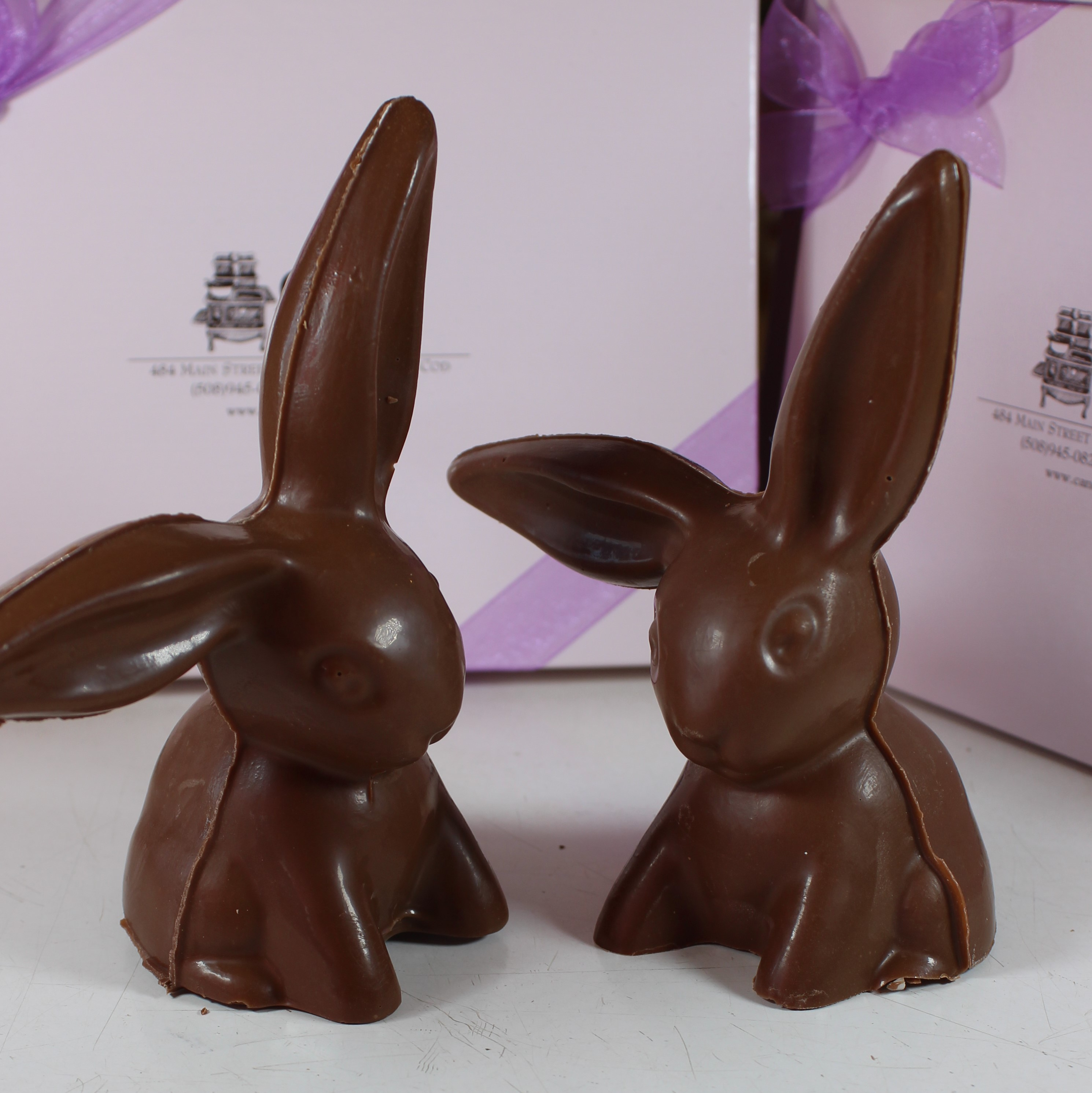 Floppy Ear Bunny - $12.00